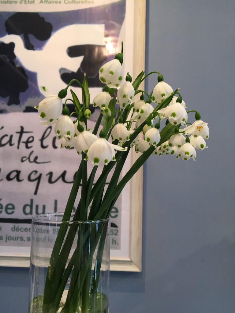 1月23日のお花🌹