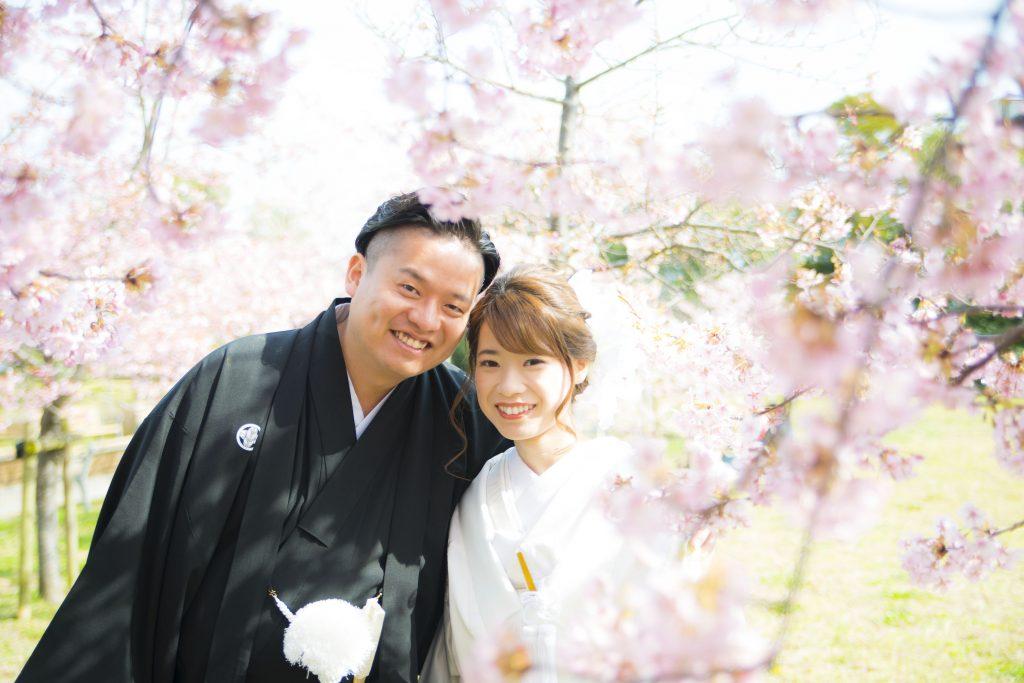 大変多くご相談いただく桜のロケーション撮影について